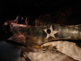 SBD Dauntless Sunk Underwater by FantasyStock