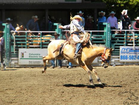 Rowell Ranch Rodeo - 17 by Nyaorestock