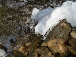 Yule Logs Freezing by fairybeliever87