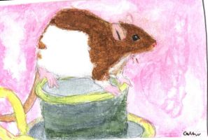 Rat on candle by Ratstien