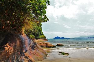 Jungle on the Beach by PhotonicBohemian