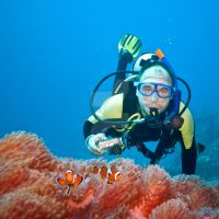 Clownfishes and photographer by MotHaiBaPhoto