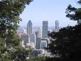 Montreal Through the Trees by j-a-x