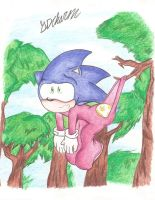 Sonic: Hanging by my Dropseat (Request) by SDCharm