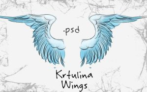 Wings by krtulina