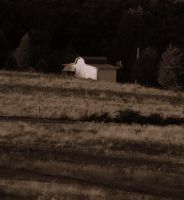 tennessee farm by deep-south-mele