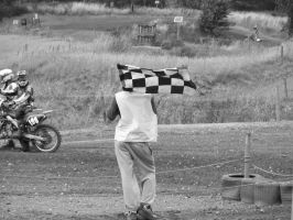 Checkered Flag by tammyins