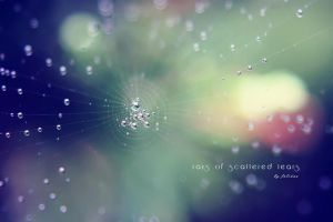 Rays of scattered tears by FeliDae84