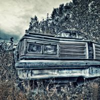 Oldsmobile by wchild