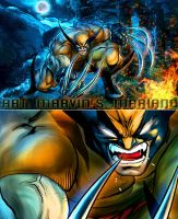 Wolverine by marvisionart
