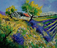 provence 569090 by pledent