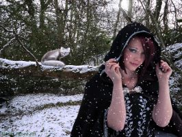 The Snow Queen by Shirley-Agnew-Art