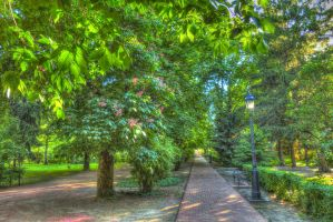 May the park. Hungary. HDR-picture by magyarilaszlo