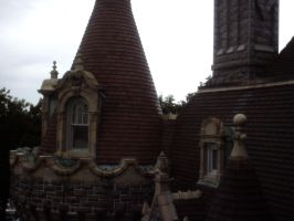 Turrets and Battlements by violetlily13