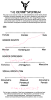 My Gender chart thingy by PrincessKooh