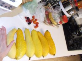 Yellow Squash in a row 3 by dtf-stock