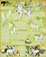 Shayde -Reference Sheet- by ElectricSilence