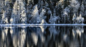 blue and white .. by KariLiimatainen