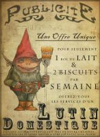 lutin domestique by absynthe88