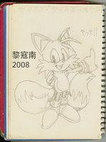 Tails 2008 Drawing by Likonan