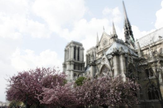 Notre Dame by HikariNoMelody