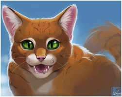 Squirrelflight by ashkey