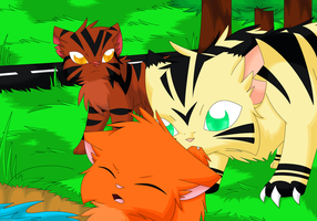 Tigerstar's hate - Contest entry by FlareAKACuteFlareon
