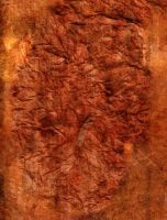 red chewed up paper by almonsor-stock