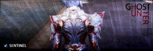 Lineage 2 - Signature by nSav