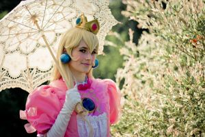 Princess Peach 09 by GebGeb