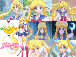 Sailor Moon Crystal Collage by LadySesshy