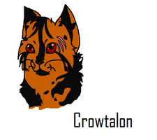 Crowtalon by CrystalTheDeatheater