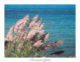 A moment of peace by picciu