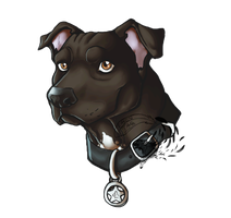 American Staffordshire Terrier... Or just Doc by Rabentag