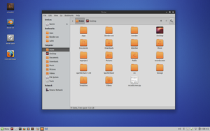 Linux Mint Nadia Custom Desktop by aditpratama1