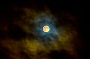 Full moon over the island by Studio5Graphics