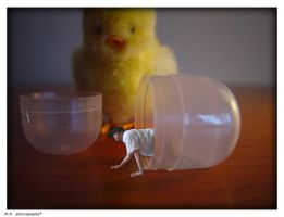 Kinder Surprise ? by Rukkancs