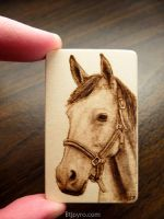 Horse - Mini woodburning by brandojones
