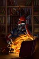 The Book by Coyrin