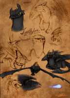 Toothless ref sketches by Ningeko16