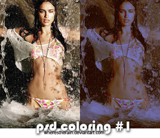Coloring PSD 1 by wherestherain