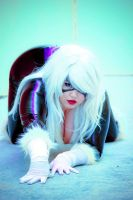 Come a little closer- Black Cat Cosplay by AlyChuCosplay