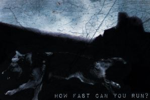 How Fast Can You Run? by evilness-2008