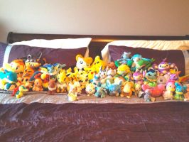 Pokemon Plush Collection by Self-Eff4cing