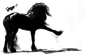 friesian sketch by AmandaTolleson