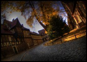 l'automne by brandybuck