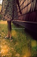 ::Dear Summer...:: by Holunder