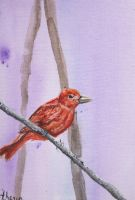 Bird Painting Red by magicalmermaidcat