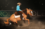 Western Competition - Reining [DAY2] by Kurooukami