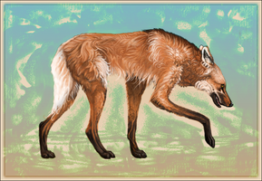 fox on stilts by coyotehe